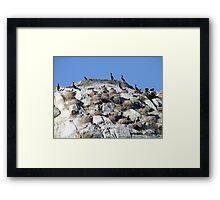 Our Nest,Our Rock,Our Home Framed Print