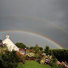 rainbow by john Bellew