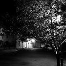 Night Light by Blaze66