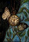 Time Flies... by ciriva