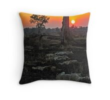 Zambia - 11 lions lying at sunset Throw Pillow