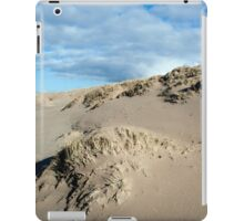 Ammophila arenaria, Marram grass growing on the Dutch North Sea Coast between Ijmuiden and Zandvoort. iPad Case/Skin
