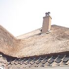Roof adventure by Sebastiaan Koenen