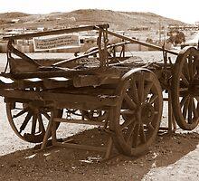 Horse drawn wagon by robmac