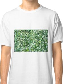 Tea leaves drying in the sun Classic T-Shirt