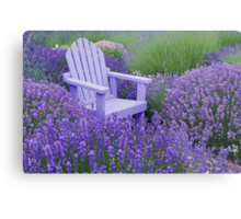 Come and sit among the Lavender Metal Print