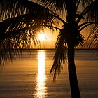 Tropical Sunrise by Zachary Golus