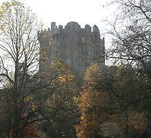 Blarney Castle, Ireland by Thomas Burns