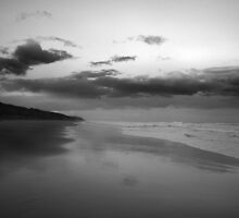 Anglesea Hutt Gully by liquidlines