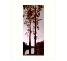 Two Souls - Trees on River Murray Art Print