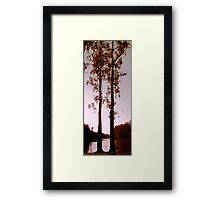 Two Souls - Trees on River Murray Framed Print