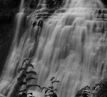 071809-357  BRANDYWINE IN B&W by MICKSPIXPHOTOS