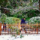 snow by marcwellman2000