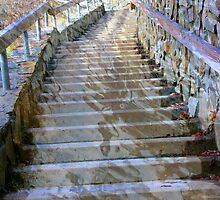 Liquid Stairway by Tibby Steedly