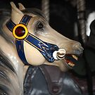 Carrousel Horse - Santa Monica Pier by CarolM