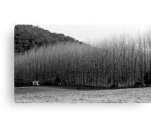 Winter's Day - Colo 1 Canvas Print