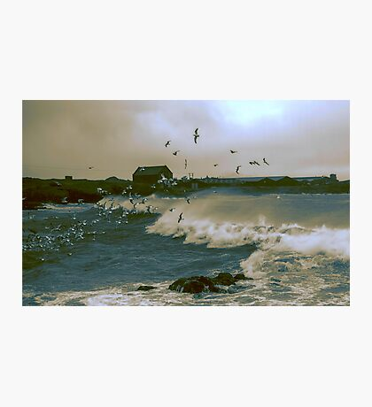 And the Wind Whipped The Gulls - 2 Photographic Print