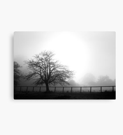 Misty Mountain Morning.... Isolated Tree Canvas Print