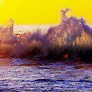 Colour splash by Alex Marks