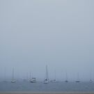 Boats in Fog by Paul Finnegan
