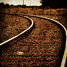Tracks to Nowhere by Trish Woodford