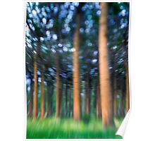 ~ the blue confetti forest ~ Poster