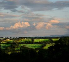 country view by john Bellew