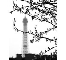 Paris, spring blooming Photographic Print