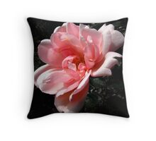 Sweet Albertine Throw Pillow