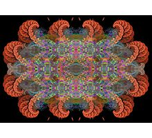 Fractal 36 Photographic Print
