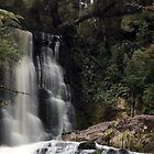 Waterfall Catlins 2  by Gary Cummins