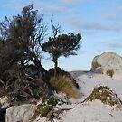 Granite sand by GeoGecko