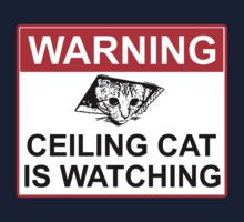 Ceiling Cat Sign by RubyFox