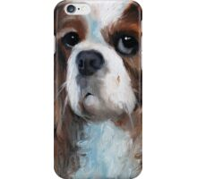 Don't Bother iPhone Case/Skin