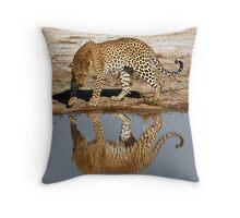 Leopard Reflection - Okavango Delta, Botswana Throw Pillow
