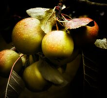 Apples in the garden by Simon Duckworth