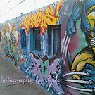 bondi art by TigerAmee