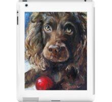 Red Ball iPad Case/Skin
