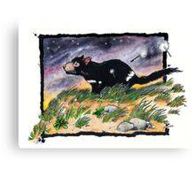Tasmainan devil on a windy night Canvas Print