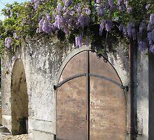 Wisteria Doorway by Janet Hamman Hunt