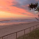 Sunrise at Surfers Paradise by Tanya Small