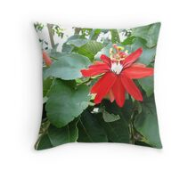 Passiflora Rubra Throw Pillow