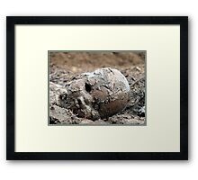 Don't muck about.. Framed Print