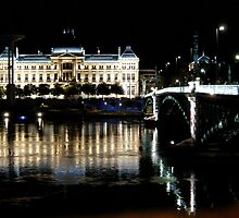 Jean Moulin University and bridge, Lyon, France by KERES Jasminka