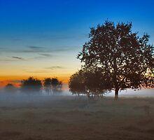 Sunset Renesse by Adri  Padmos