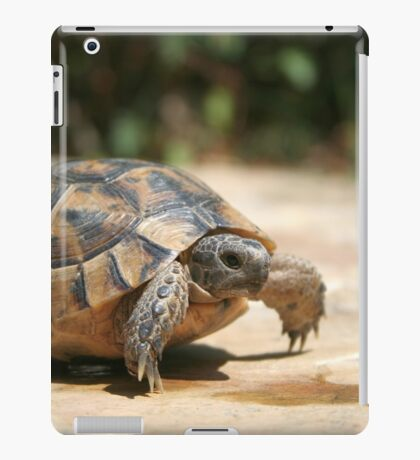 Portrait of a Young Wild Tortoise iPad Case/Skin