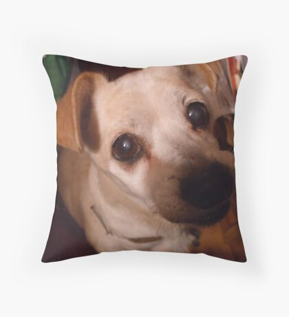 CHI~CHI TODAY Throw Pillow