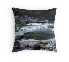 Washpool Yosmite NP Throw Pillow