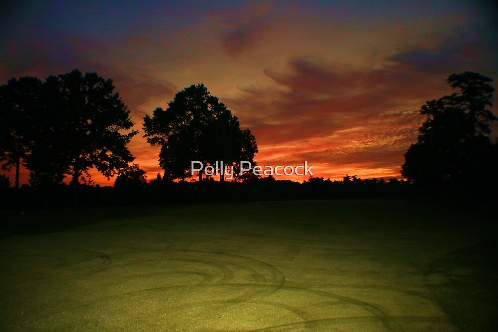 Circular Sunrise by Polly Peacock