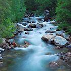 Roaring River by Talo Pinto